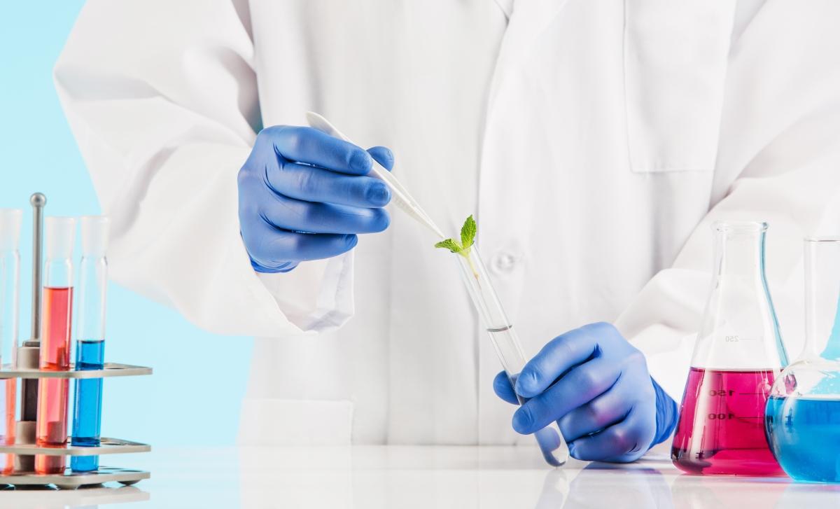 La ricerca sulla cannabis